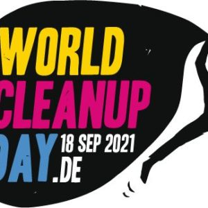 world cleanup