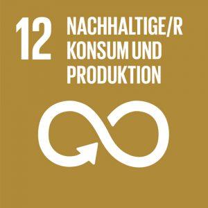 SDG-icon-DE-12